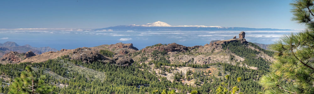 Blick vom Pico de las Nieves auf den Roque Nublo und den schneebedeckten Teide