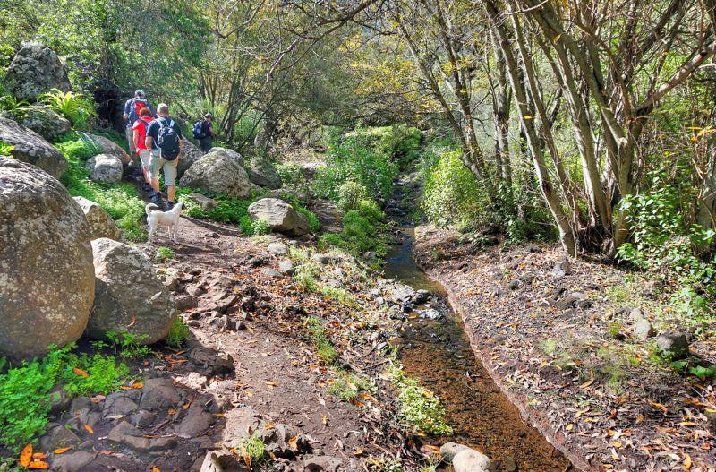 Wandergruppe in der Falkenschlucht, es geht am Bach entlang