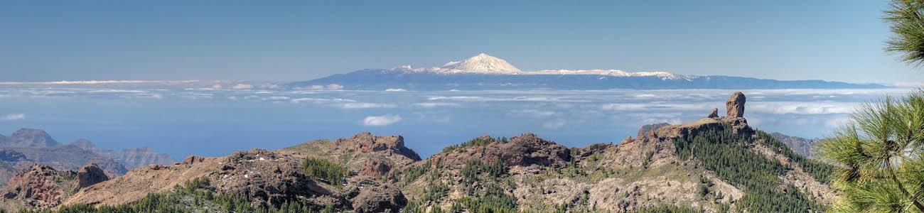 Wandertour mit Wanderführer zum Pico de las Nieves, im Bild Roque Nublo und Teide