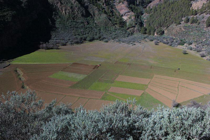 Krater, Caldera de los Marteles im Osten von Gran Canaria