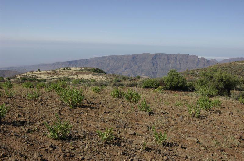 Alte, aufgelassene Felder bei einer Wandertour im Südosten von Gran Canaria