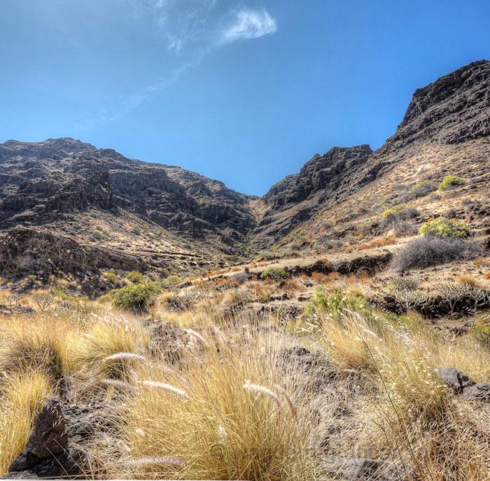 Terrassenfelder und trockenes Gras beim wanden im Sommer, Blick hinauf zur Degollada de Aguas Sabinas