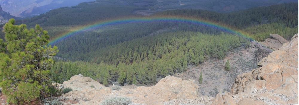 Regenbogen auf einer Wanderung über dem Kiefernwald beim Pico de las Nieves, Gran Canaria