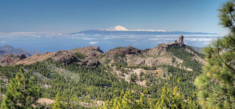 Teide auf Teneriffa mit Schnee und Roque Nublo mit Kiefernwald im Vordergrund