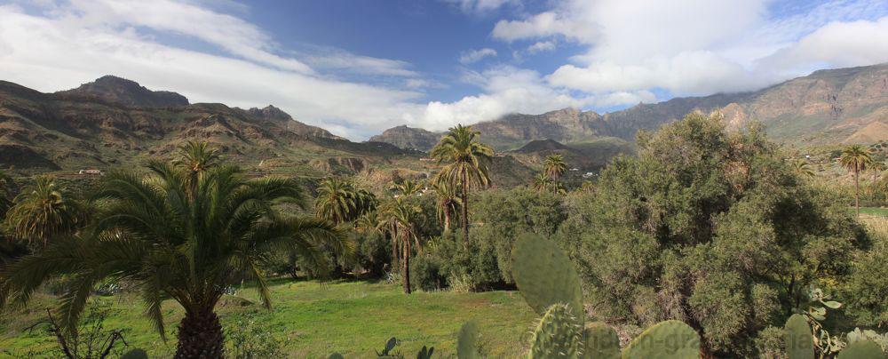 Kessel von Tirajana mit Palmen und Olivenbäumen auf dem Rückweg der Wandertour