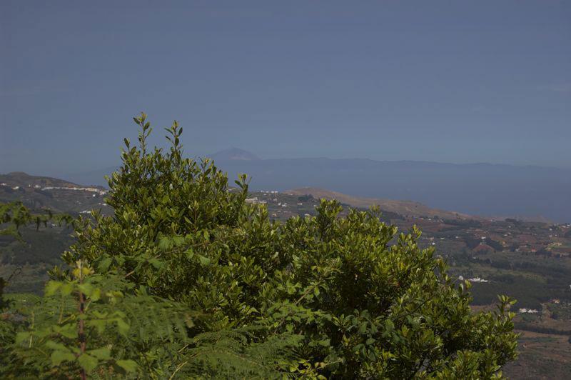 Blick von der Montaña de Osorio nach Teneriffa mit dem Teide