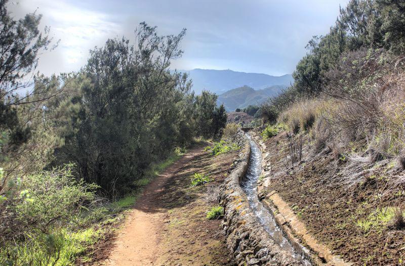 Wasserleitung verläuft durch den aufgeforsteten Baumheidewald an der Montaña de Osorio