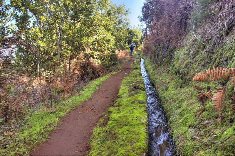 Alte Wasserleitung mit viel Moos neben dem Wanderweg zum Osorio Berg