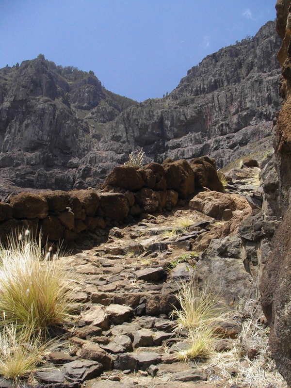 Stein gepflasterter Camino Real von San Pedro zum Tamadaba Gebiet