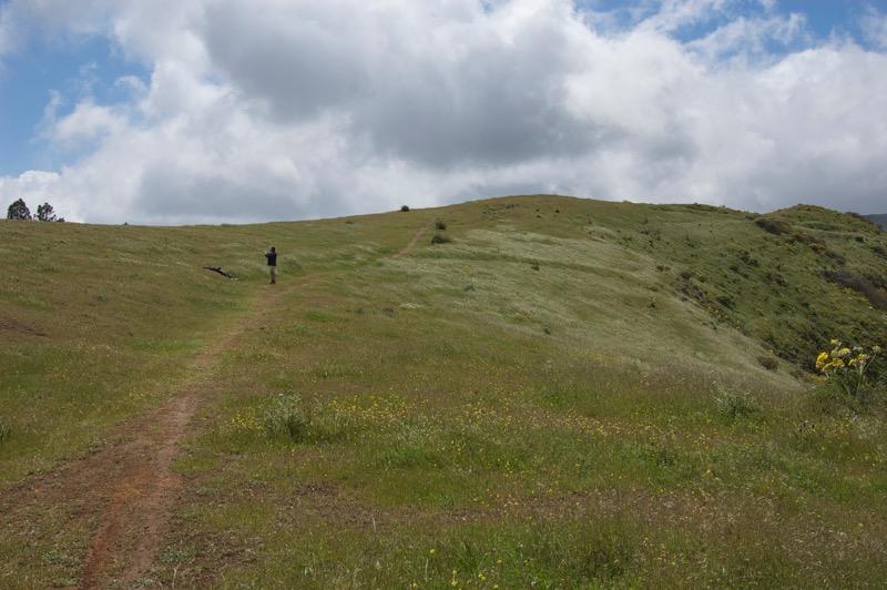 Grüne Wiesenhänge und Wanderpfad oberhalb von Valsequillo