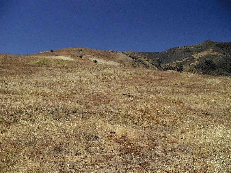 Im Sommer sind die Wiesenhänge trocken, Gran Canaria Nordosten