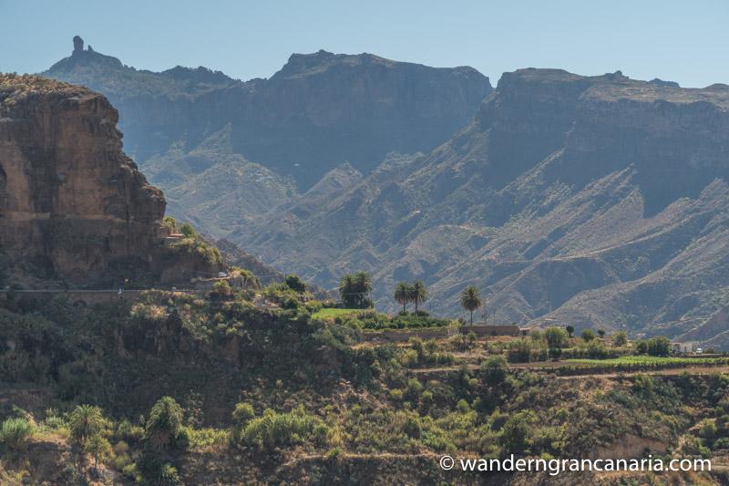 GrÜne Terrassenfelder unterhalb von Acusa und im Hintergrund der Roque Nublo