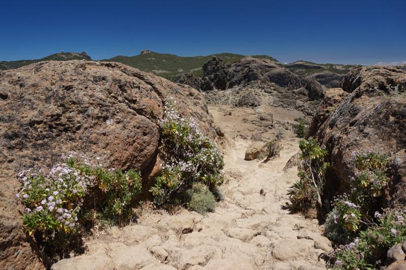 Teil des Weges zum Roque Nublo