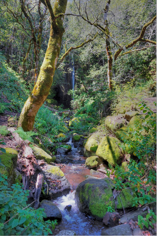 Kleiner Bach in eine grünen Tal oberhalb von Valsendero
